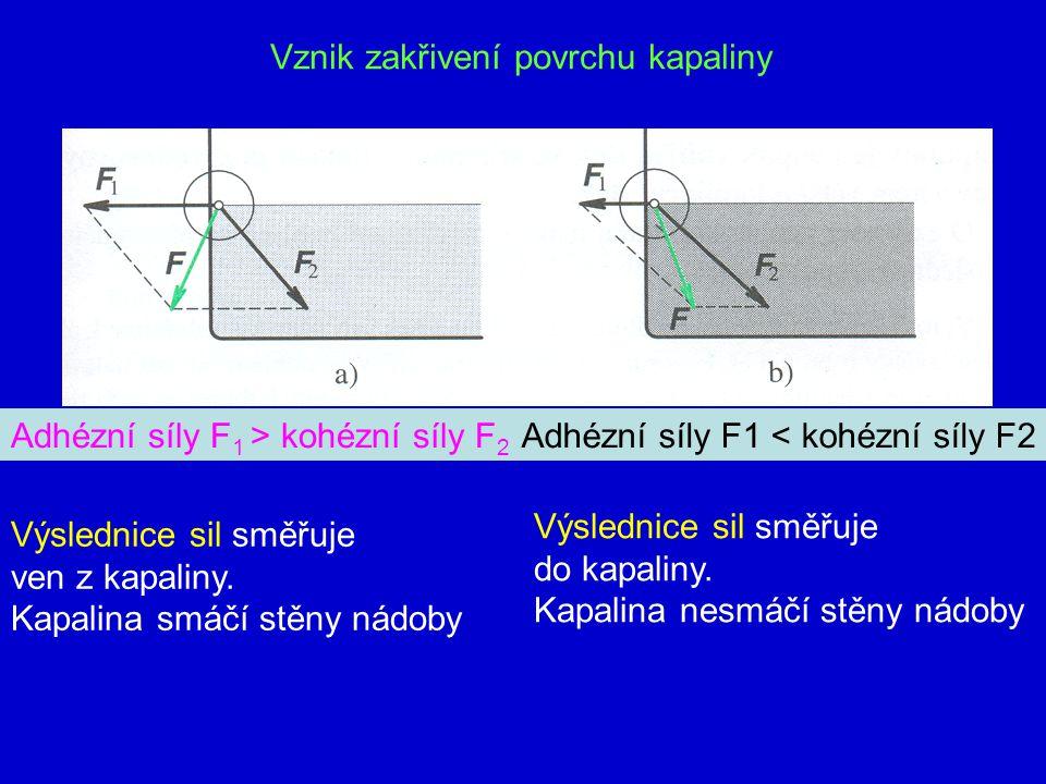 4. Jevy na rozhraní pevného tělesa a kapaliny Povrch kapaliny: a) dutý – kapaliny smáčí stěny nádoby (voda ve skle) b) vypuklý – kapaliny nesmáčí stěn