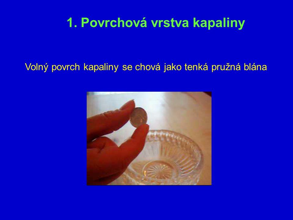 1. Povrchová vrstva kapaliny Volný povrch kapaliny se chová jako tenká pružná blána