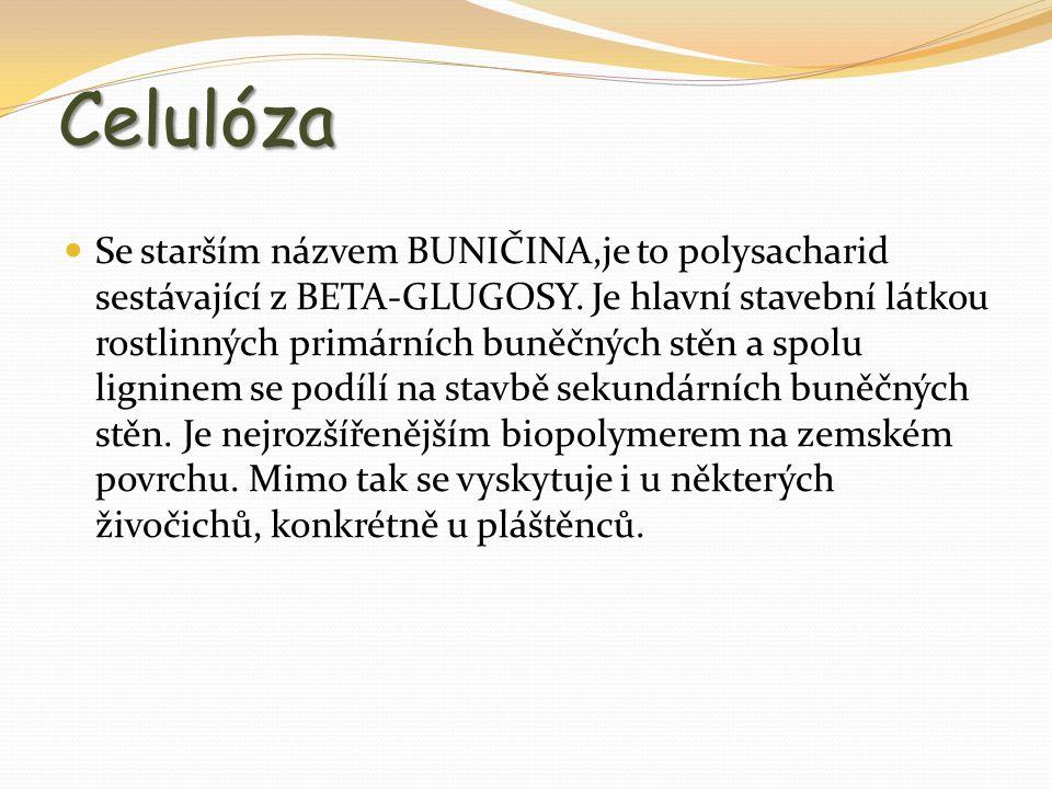 Celulóza Se starším názvem BUNIČINA,je to polysacharid sestávající z BETA-GLUGOSY. Je hlavní stavební látkou rostlinných primárních buněčných stěn a s