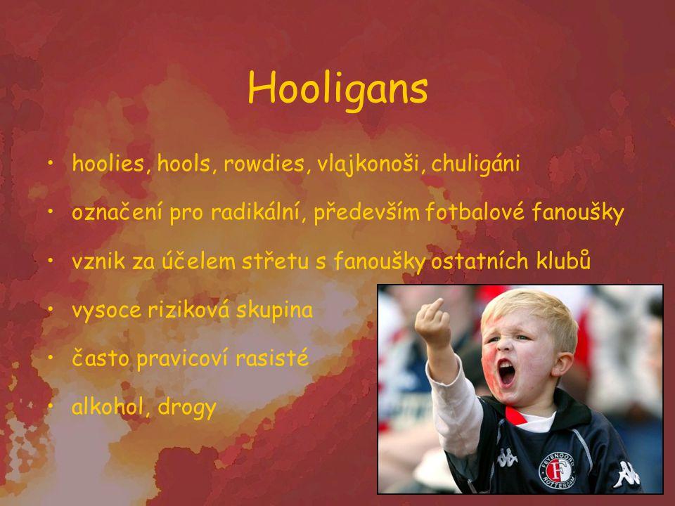 Hooligans hoolies, hools, rowdies, vlajkonoši, chuligáni označení pro radikální, především fotbalové fanoušky vznik za účelem střetu s fanoušky ostatn