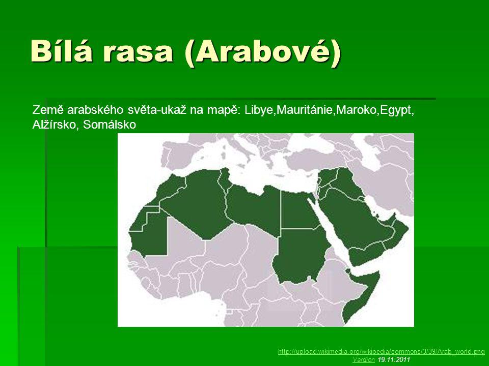 Bílá rasa (Arabové) Země arabského světa-ukaž na mapě: Libye,Mauritánie,Maroko,Egypt, Alžírsko, Somálsko http://upload.wikimedia.org/wikipedia/commons/3/39/Arab_world.png VardionVardion 19.11.2011