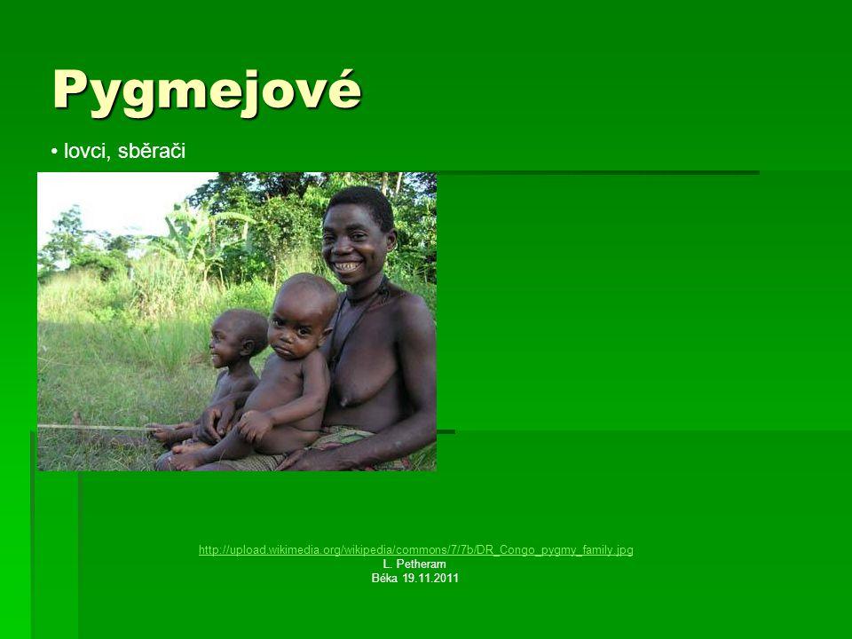 Pygmejové lovci, sběrači http://upload.wikimedia.org/wikipedia/commons/7/7b/DR_Congo_pygmy_family.jpg L.