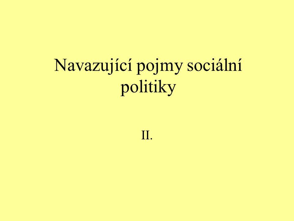 Navazující pojmy sociální politiky II.