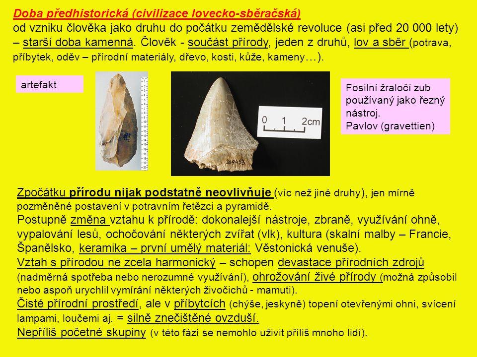Doba předhistorická (civilizace lovecko-sběračská) od vzniku člověka jako druhu do počátku zemědělské revoluce (asi před 20 000 lety) – starší doba kamenná.