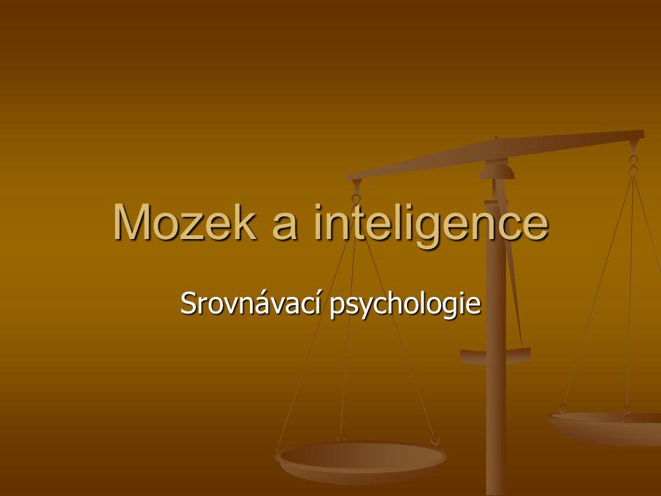 Mozek a inteligence Srovnávací psychologie