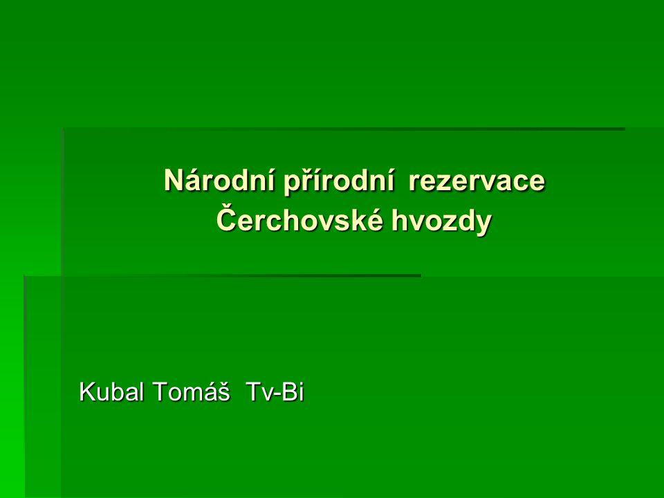 Národní přírodní rezervace Čerchovské hvozdy Kubal Tomáš Tv-Bi