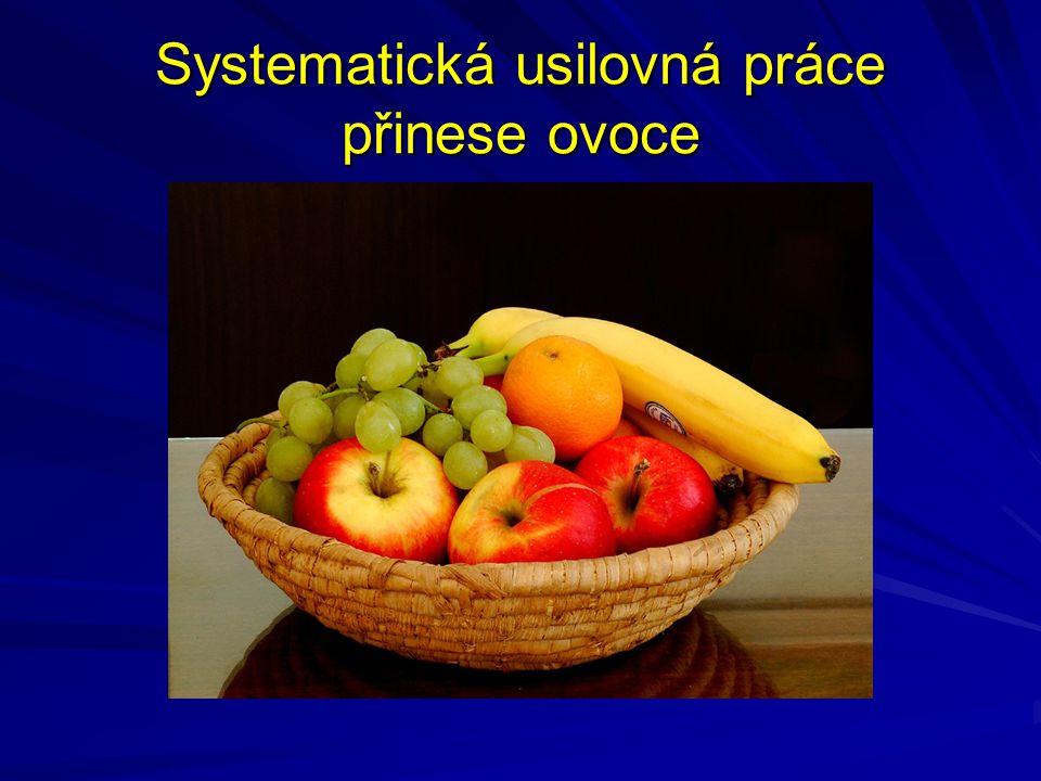 Systematická usilovná práce přinese ovoce