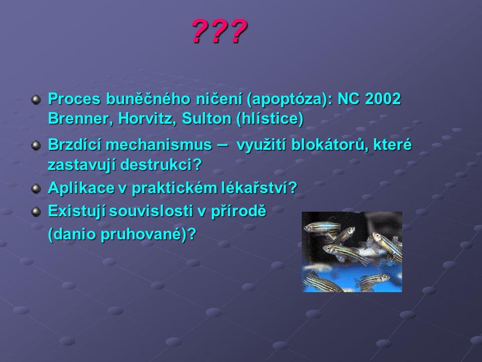 ??? Proces buněčného ničení (apoptóza): NC 2002 Brenner, Horvitz, Sulton (hlístice) Brzdící mechanismus – využití blokátorů, které zastavují destrukci