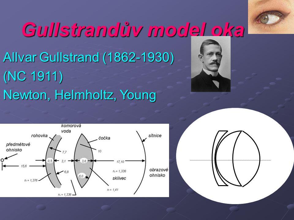 Gullstrandův model oka Allvar Gullstrand (1862-1930) (NC 1911) Newton, Helmholtz, Young