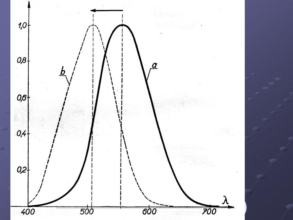 sítnice (11 vrstev) tyčinkyčípky žlutá skvrna (čípků 50x více než tyčinek) slepá skvrna (Mariottův pokus)