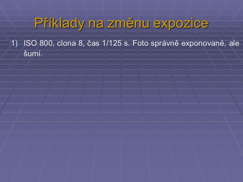 Příklady na změnu expozice 1)ISO 800, clona 8, čas 1/125 s. Foto správně exponované, ale šumí.