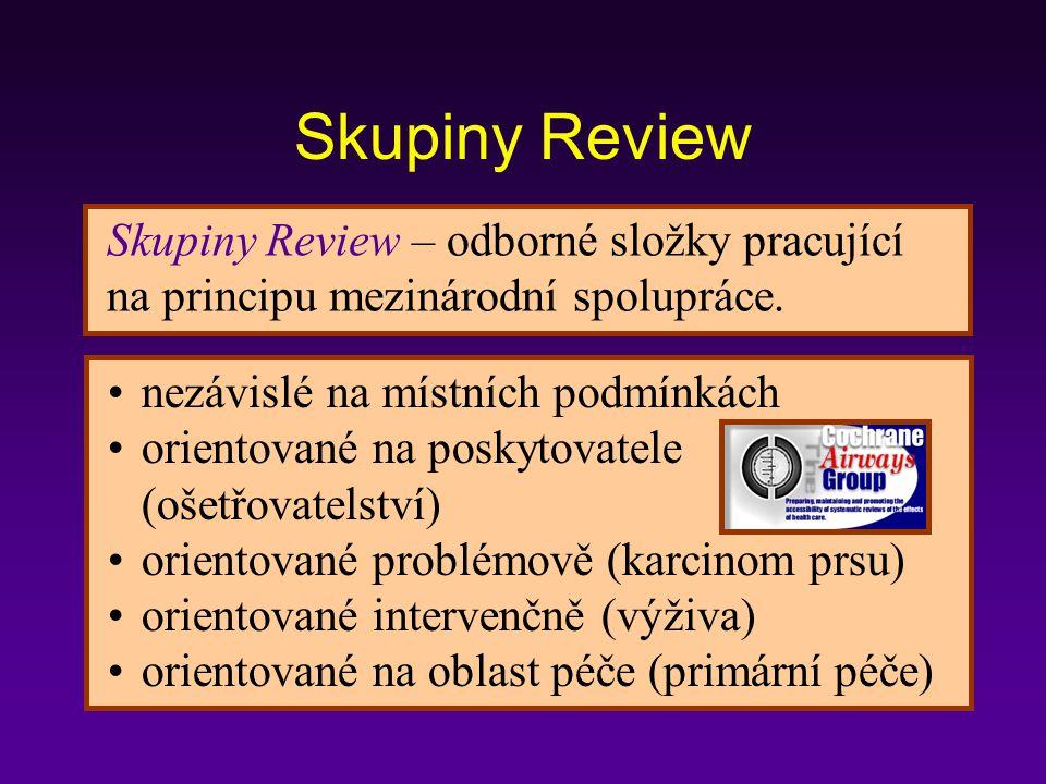 Skupiny Review – odborné složky pracující na principu mezinárodní spolupráce.