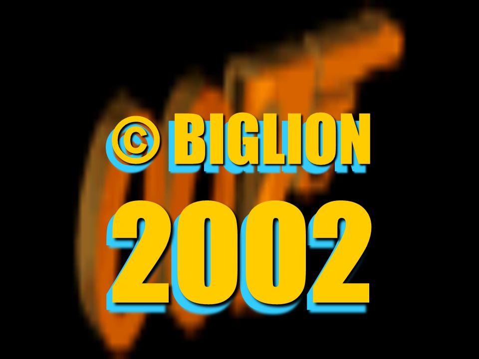 © BIGLION 2002 ©BIGLION 2002