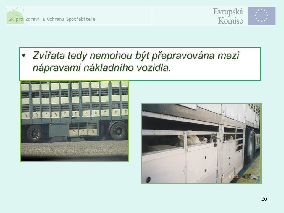 20 Zvířata tedy nemohou být přepravována mezi nápravami nákladního vozidla.Zvířata tedy nemohou být přepravována mezi nápravami nákladního vozidla.