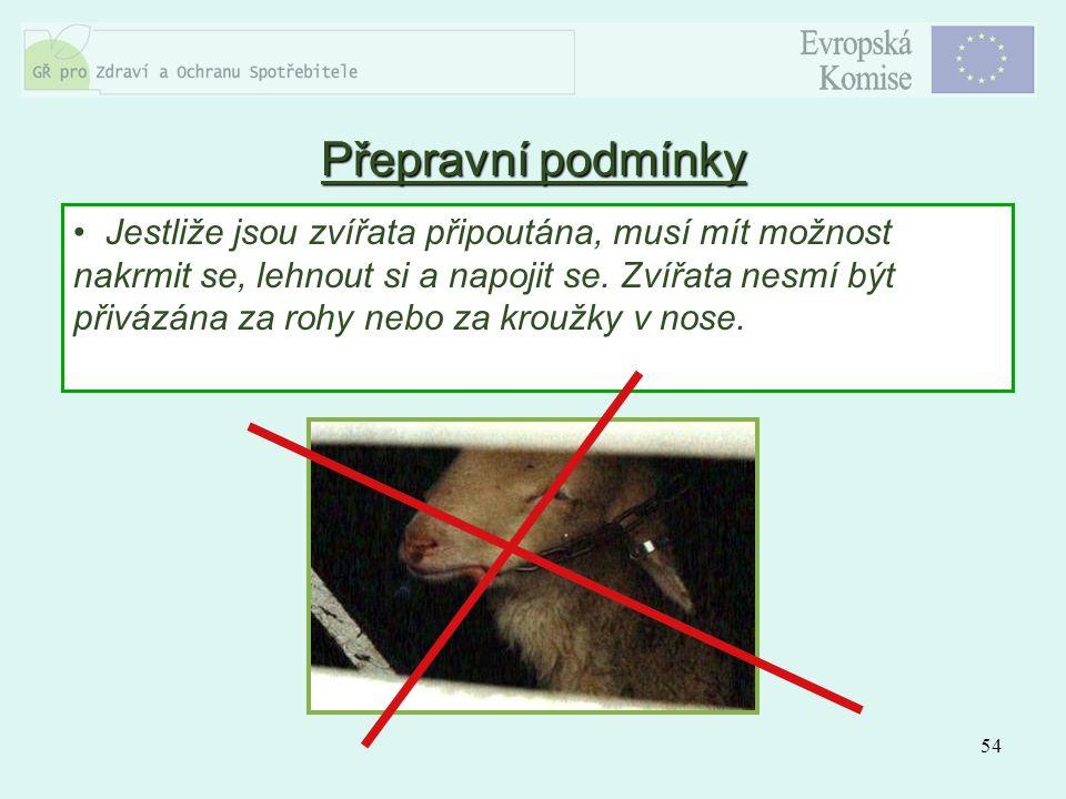54 Jestliže jsou zvířata připoutána, musí mít možnost nakrmit se, lehnout si a napojit se. Zvířata nesmí být přivázána za rohy nebo za kroužky v nose.