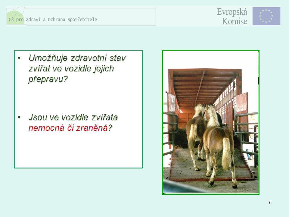 6 Umožňuje zdravotní stav zvířat ve vozidle jejich přepravu?Umožňuje zdravotní stav zvířat ve vozidle jejich přepravu? Jsou ve vozidle zvířata nemocná