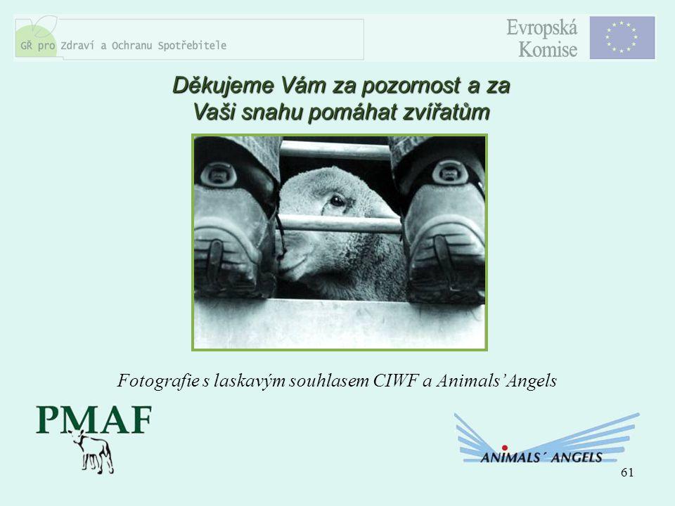 61 Děkujeme Vám za pozornost a za Vaši snahu pomáhat zvířatům Fotografie s laskavým souhlasem CIWF a Animals'Angels
