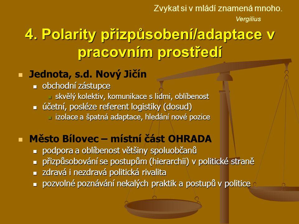 4. Polarity přizpůsobení/adaptace v pracovním prostředí Jednota, s.d.