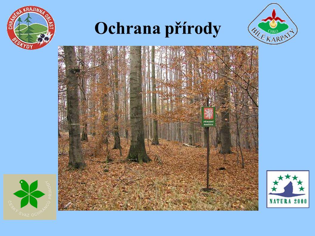 Mapa chráněných území v ČR červeně-národní parky -České Švýcarsko, KRNAP, Šumava.