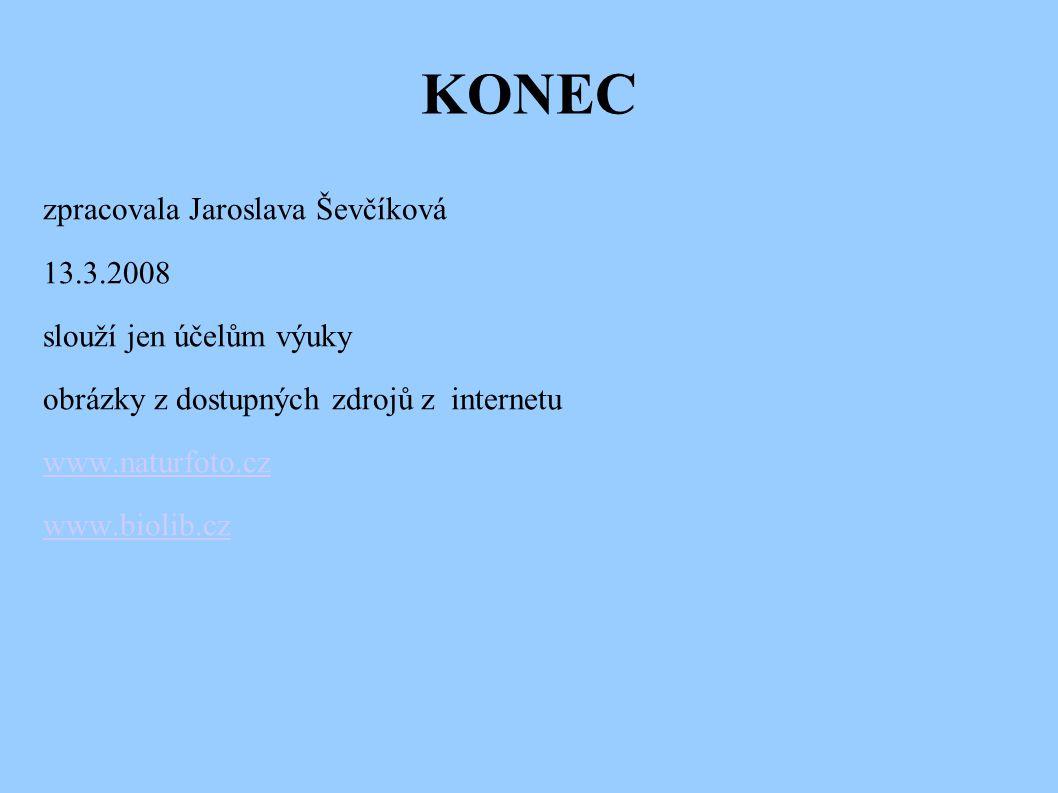 KONEC zpracovala Jaroslava Ševčíková 13.3.2008 slouží jen účelům výuky obrázky z dostupných zdrojů z internetu www.naturfoto.cz www.biolib.cz