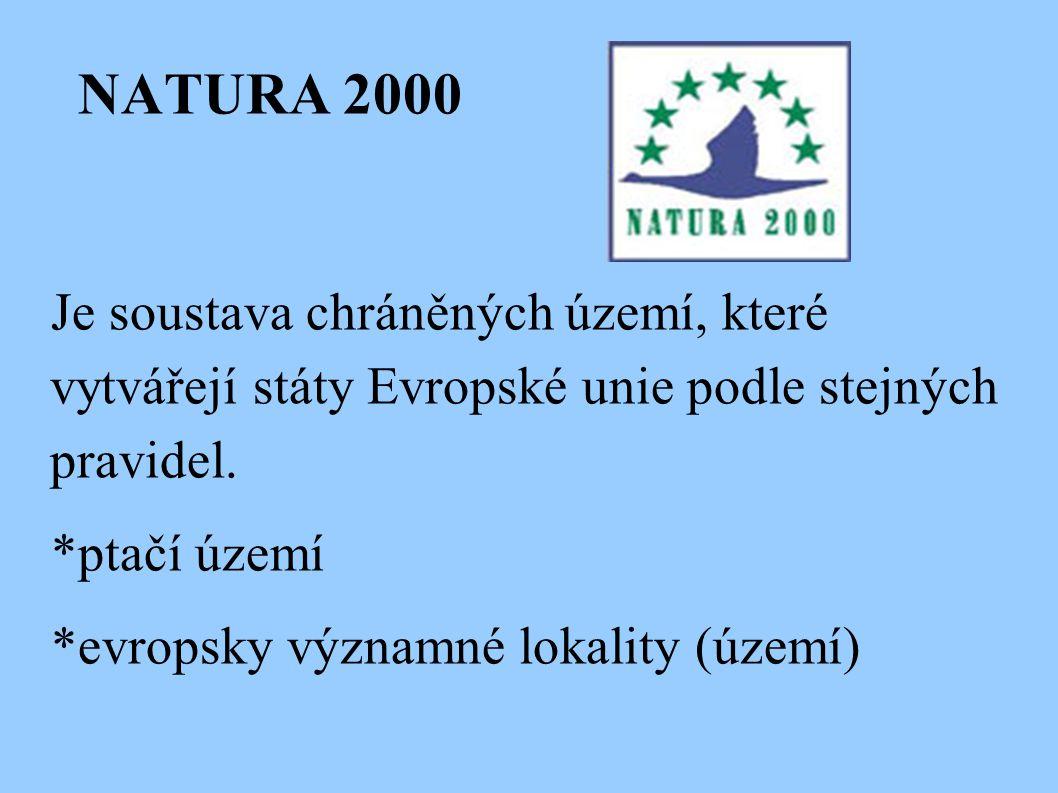 NATURA 2000 Je soustava chráněných území, které vytvářejí státy Evropské unie podle stejných pravidel. *ptačí území *evropsky významné lokality (území