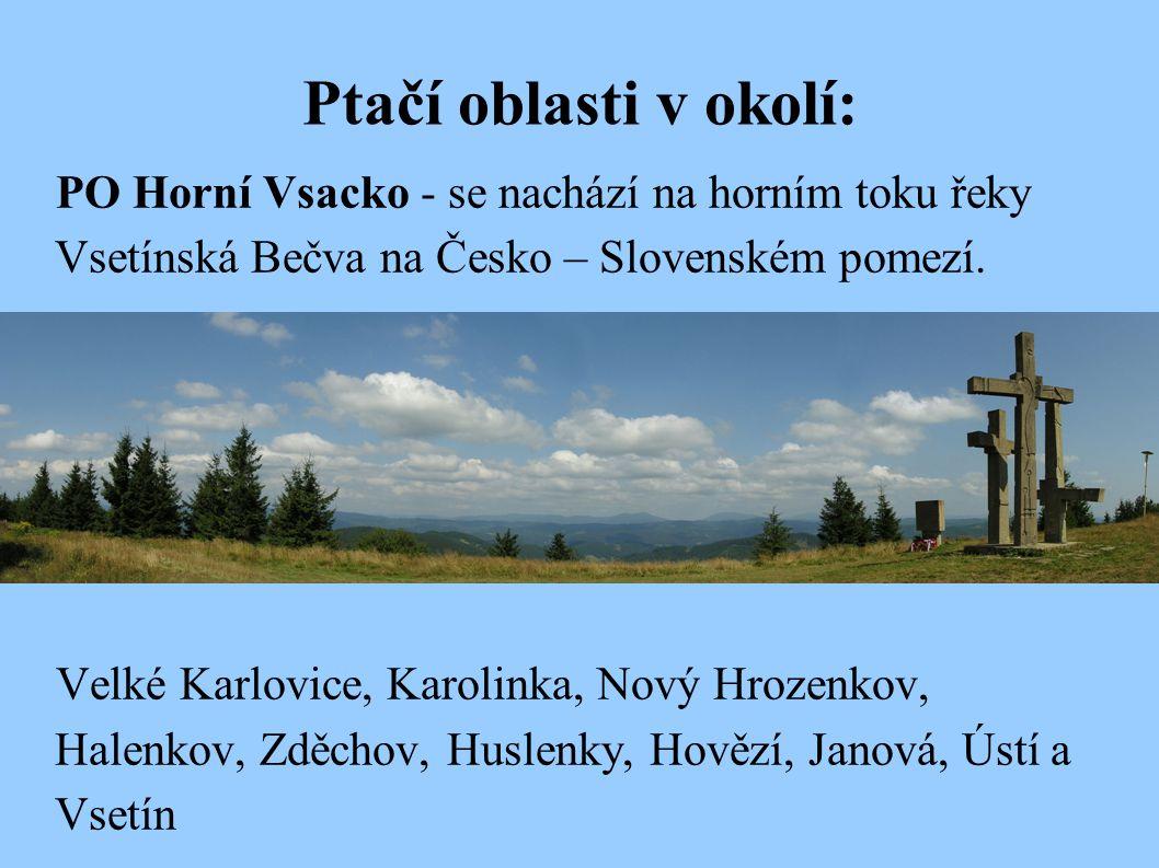 Ptačí oblasti v okolí: PO Horní Vsacko - se nachází na horním toku řeky Vsetínská Bečva na Česko – Slovenském pomezí. Velké Karlovice, Karolinka, Nový