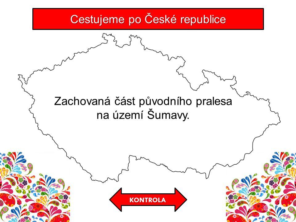 KONTROLA Cestujeme po České republice Zachovaná část původního pralesa na území Šumavy.