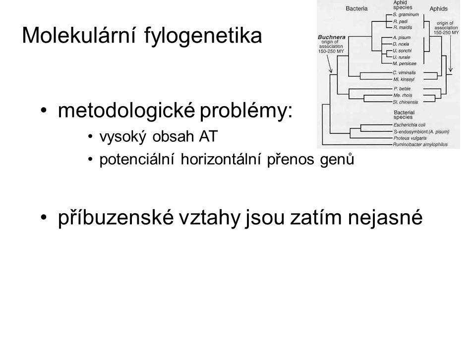 Molekulární fylogenetika metodologické problémy: vysoký obsah AT potenciální horizontální přenos genů příbuzenské vztahy jsou zatím nejasné