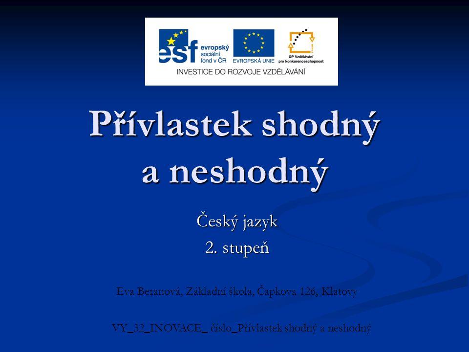 Přívlastek shodný a neshodný Český jazyk 2.