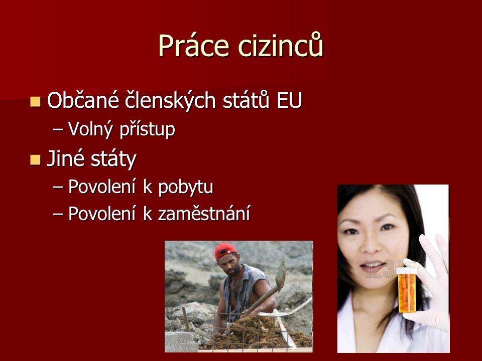 Práce cizinců Občané členských států EU Občané členských států EU –Volný přístup Jiné státy Jiné státy –Povolení k pobytu –Povolení k zaměstnání