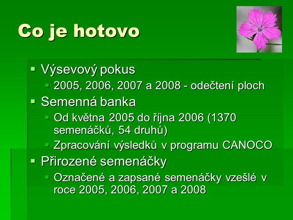  Výsevový pokus  2005, 2006, 2007 a 2008 - odečtení ploch  Semenná banka  Od května 2005 do října 2006 (1370 semenáčků, 54 druhů)  Zpracování výs