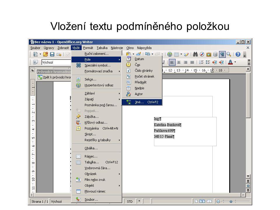 Vložení textu podmíněného položkou