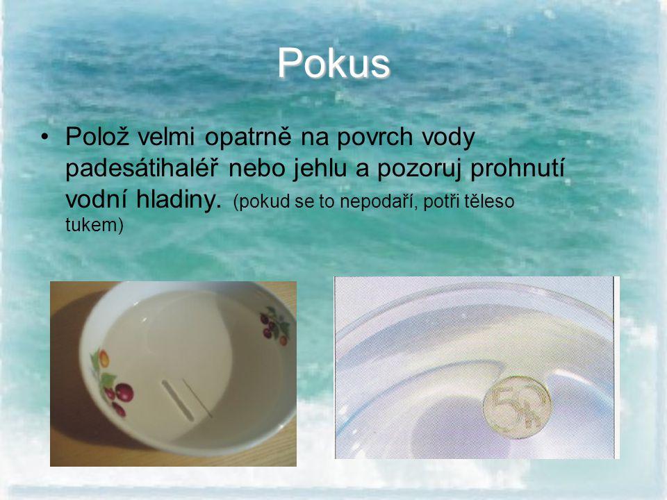 Pokus Polož velmi opatrně na povrch vody padesátihaléř nebo jehlu a pozoruj prohnutí vodní hladiny. (pokud se to nepodaří, potři těleso tukem)