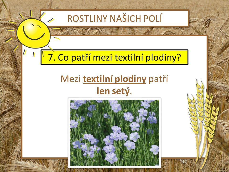 ROSTLINY NAŠICH POLÍ Mezi textilní plodiny patří len setý. Mezi textilní plodiny patří len setý. 7. Co patří mezi textilní plodiny?