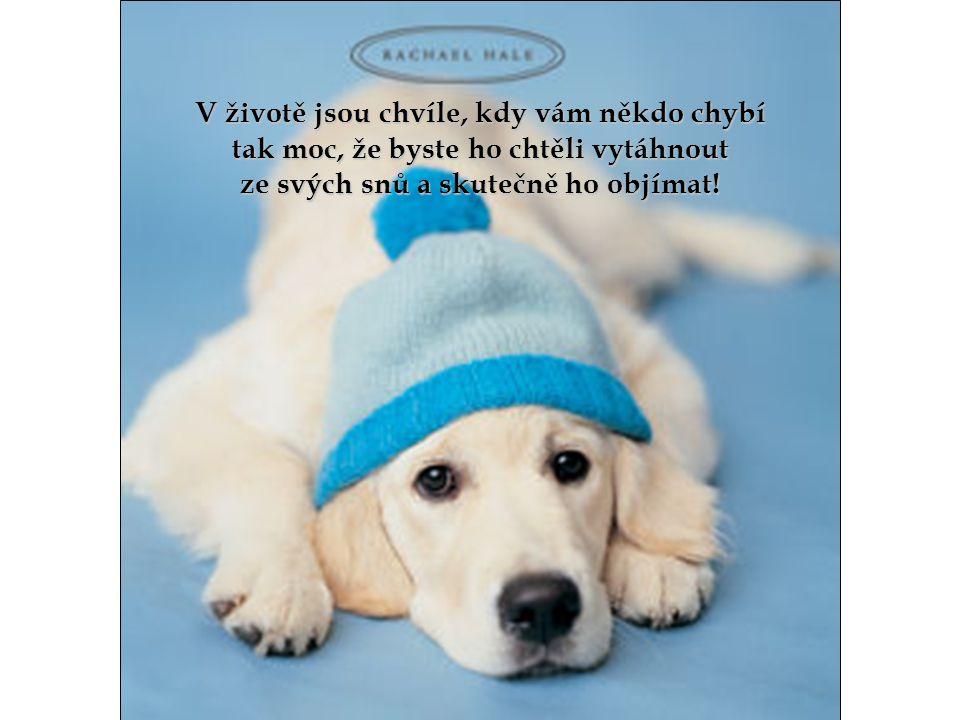 …těm, kteří vás přiměli k úsměvu, …těm, kteří vás přiměli k úsměvu, když jste to opravdu potřebovali;