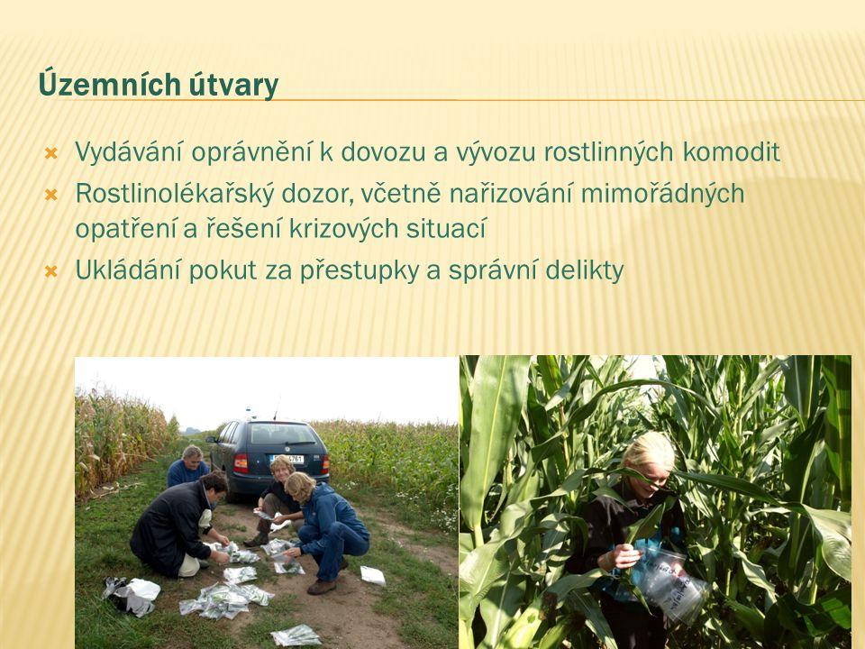 Územních útvary  Vydávání oprávnění k dovozu a vývozu rostlinných komodit  Rostlinolékařský dozor, včetně nařizování mimořádných opatření a řešení krizových situací  Ukládání pokut za přestupky a správní delikty