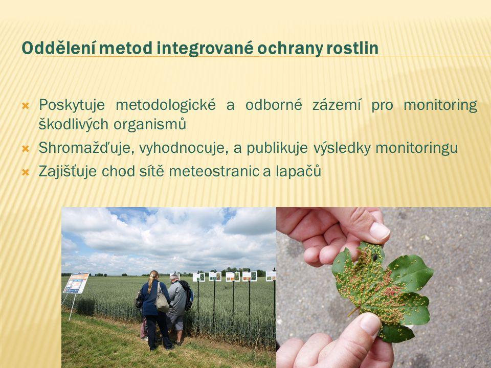 Oddělení metod integrované ochrany rostlin  Poskytuje metodologické a odborné zázemí pro monitoring škodlivých organismů  Shromažďuje, vyhodnocuje, a publikuje výsledky monitoringu  Zajišťuje chod sítě meteostranic a lapačů
