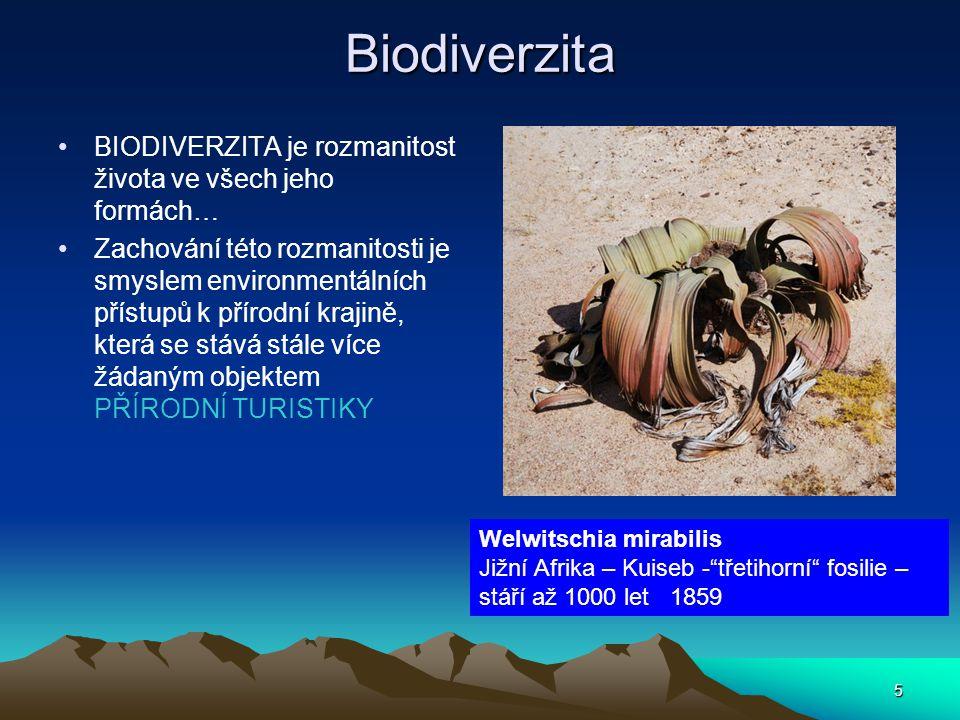 5 Biodiverzita BIODIVERZITA je rozmanitost života ve všech jeho formách… Zachování této rozmanitosti je smyslem environmentálních přístupů k přírodní