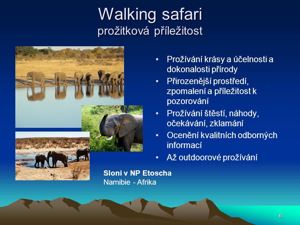 6 Walking safari prožitková příležitost Prožívání krásy a účelnosti a dokonalosti přírody Přirozenější prostředí, zpomalení a příležitost k pozorování