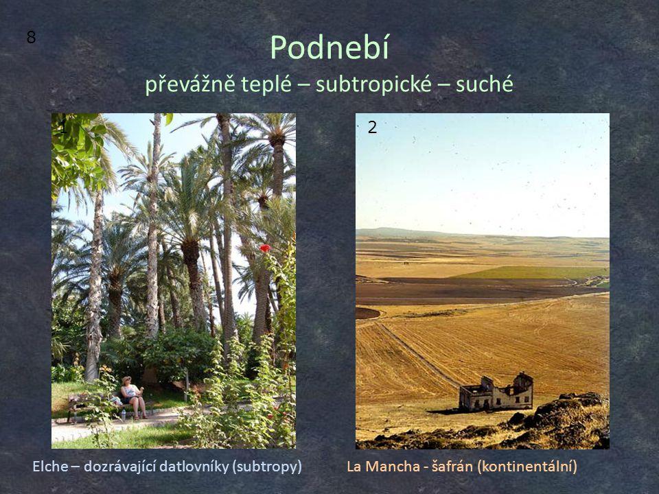 Podnebí převážně teplé – subtropické – suché Elche – dozrávající datlovníky (subtropy) 12 La Mancha - šafrán (kontinentální) 8