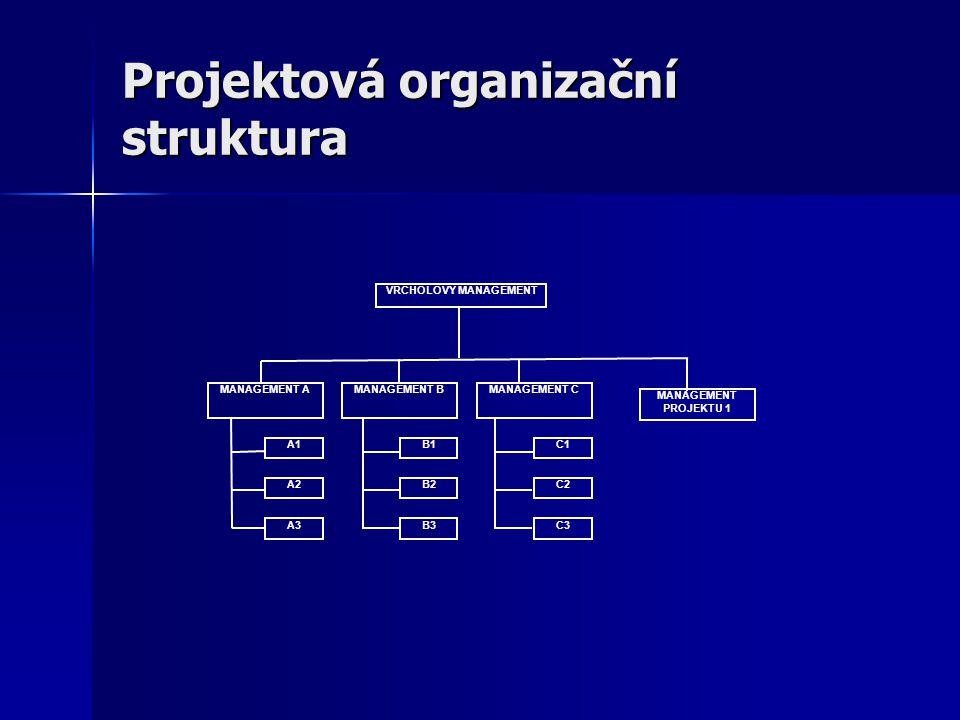 Projektová organizační struktura MANAGEMENT PROJEKTU 1 VRCHOLOVÝ MANAGEMENT MANAGEMENT AMANAGEMENT CMANAGEMENT B A1 A2 A3B3 B2 B1 C3 C2 C1