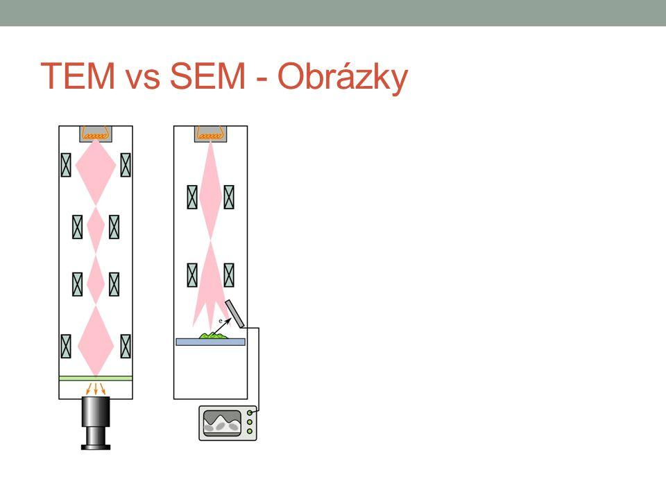 TEM vs SEM - Obrázky