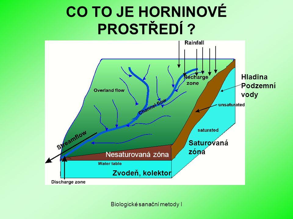 Biologické sanační metody I CO TO JE HORNINOVÉ PROSTŘEDÍ ? Zvodeň, kolektor Saturovaná zóna Nesaturovaná zóna Hladina Podzemní vody