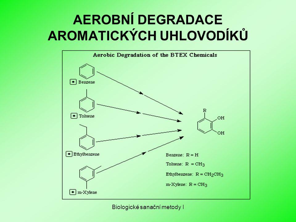 Biologické sanační metody I AEROBNÍ DEGRADACE AROMATICKÝCH UHLOVODÍKŮ