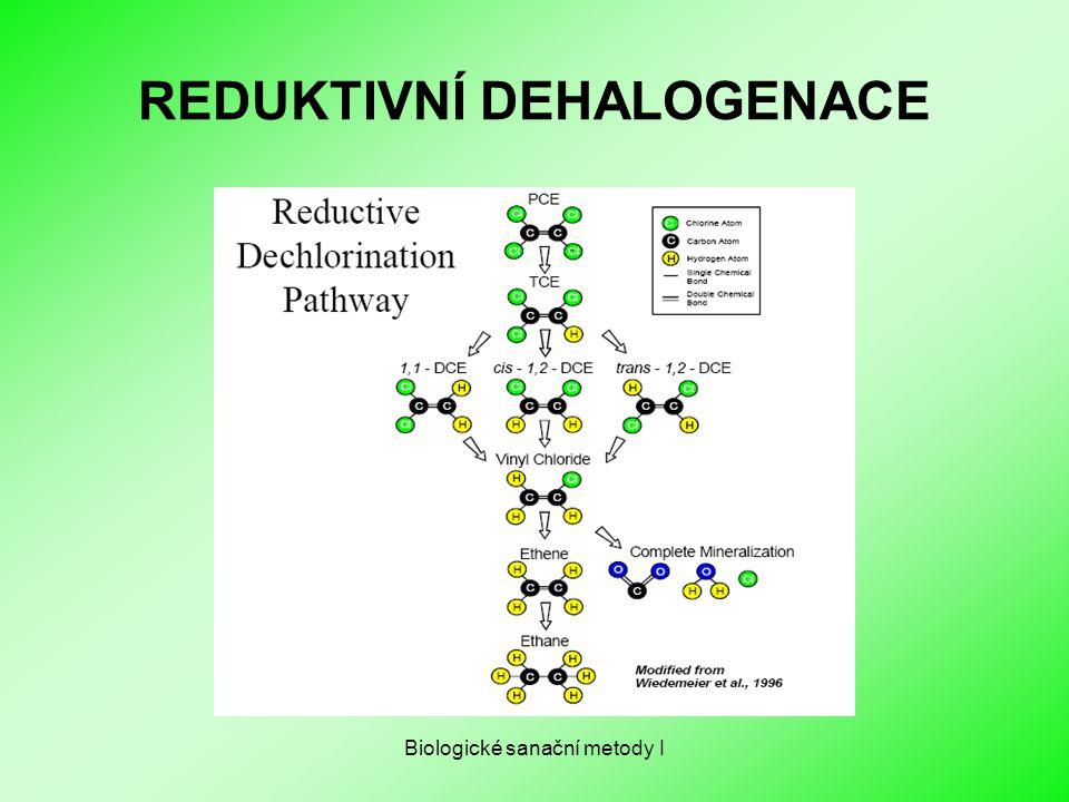 Biologické sanační metody I REDUKTIVNÍ DEHALOGENACE