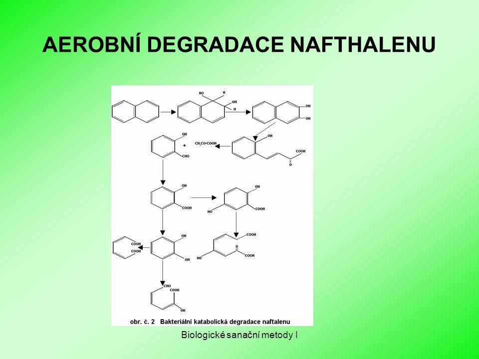 Biologické sanační metody I AEROBNÍ DEGRADACE NAFTHALENU