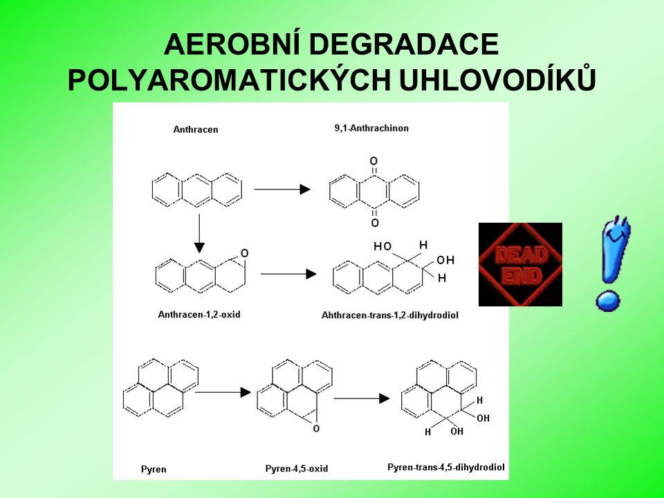Biologické sanační metody I AEROBNÍ DEGRADACE POLYAROMATICKÝCH UHLOVODÍKŮ