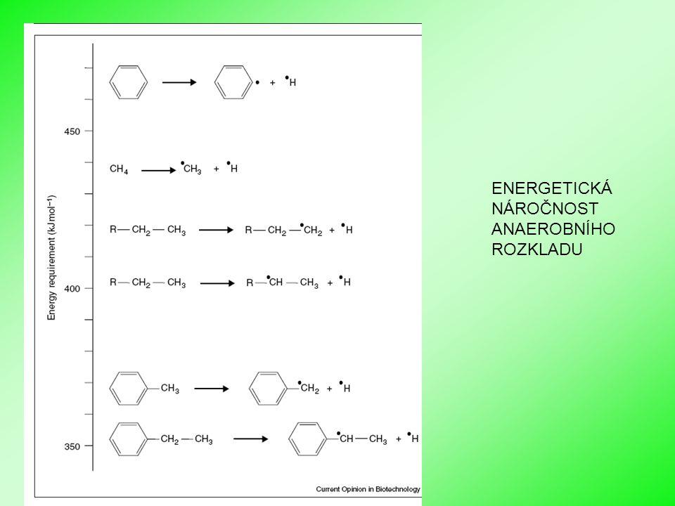 Biologické sanační metody I ENERGETICKÁ NÁROČNOST ANAEROBNÍHO ROZKLADU