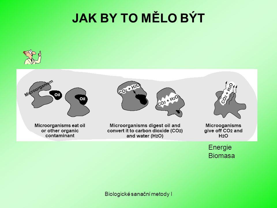 Biologické sanační metody I JAK BY TO MĚLO BÝT Energie Biomasa