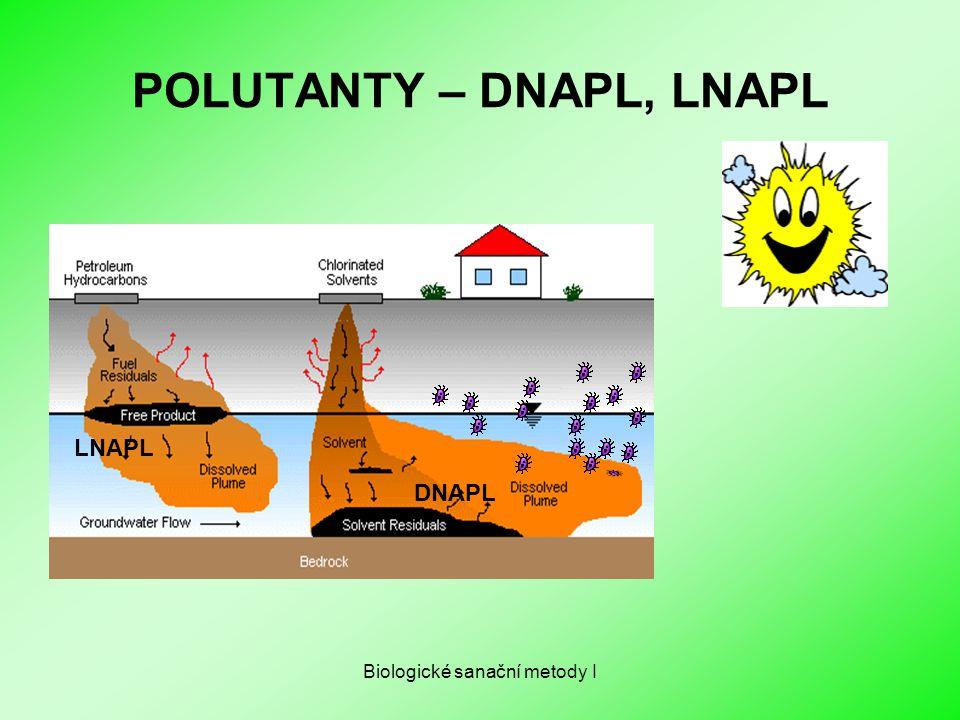 Biologické sanační metody I POLUTANTY – DNAPL, LNAPL LNAPL DNAPL